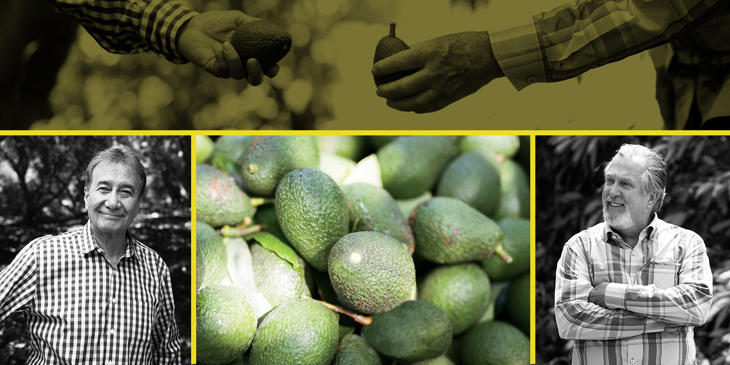 West Pak Co-Founder Galen Newhouse (left) and Randy Shoup (right), with freshly picked West Pak avocados (center)