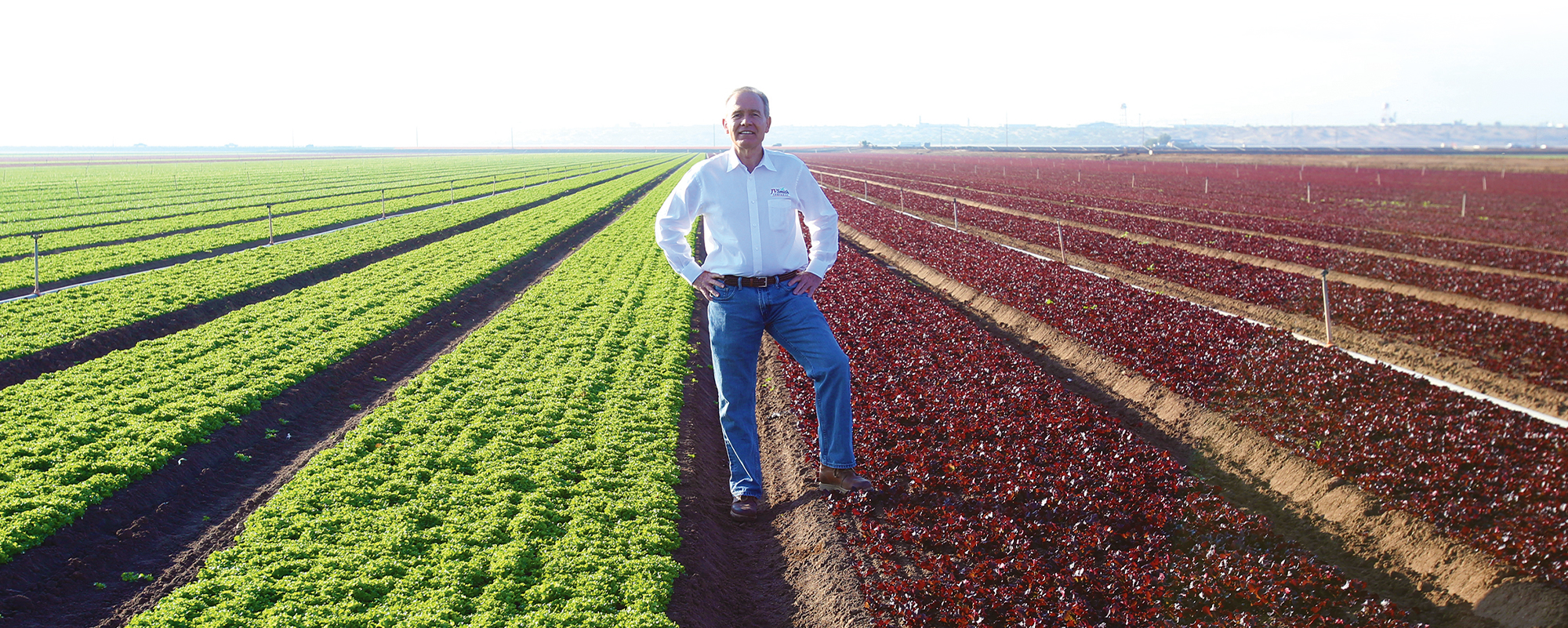 Vic oversees farming, packing, and cooling operations spread across a diverse set of categories and an impressive swath of the Southwest—growing on over 30,000 acres, with operations throughout both the United States and Mexico