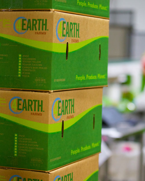 Everything in the 4Earth Farms facility is immaculate, even how boxes are stored, reflecting the company's attention to detail