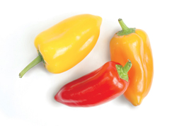 Peppers from Prime Time International