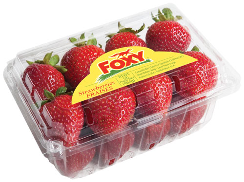 Foxy brand conventional strawberries