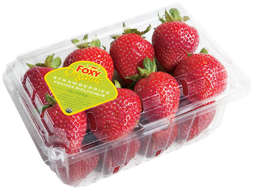 Foxy brand organic strawberries
