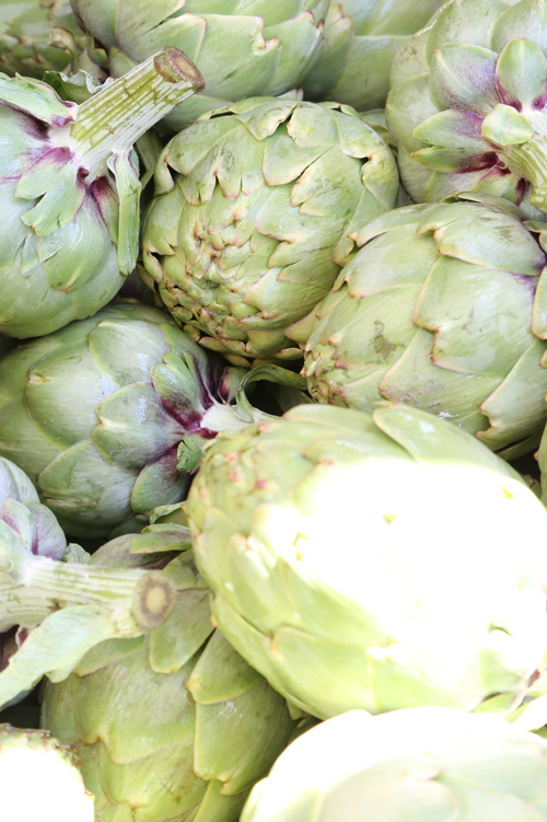 Consistent, year-round supply of quality, good-eating artichokes is the new normal
