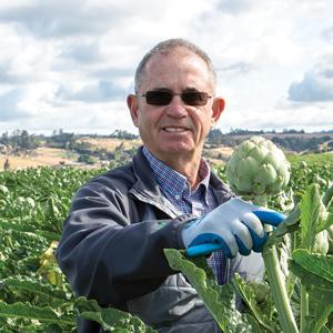 Dale Huss, VP of Artichoke Production, Ocean Mist® Farms