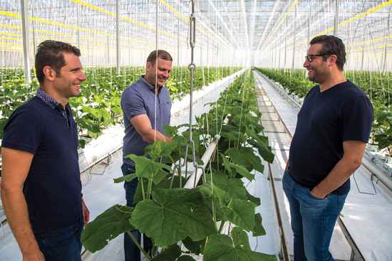 Jeff Moracci, Matt Mastronardi, and Jamie Moracci have a meeting in the greenhouse