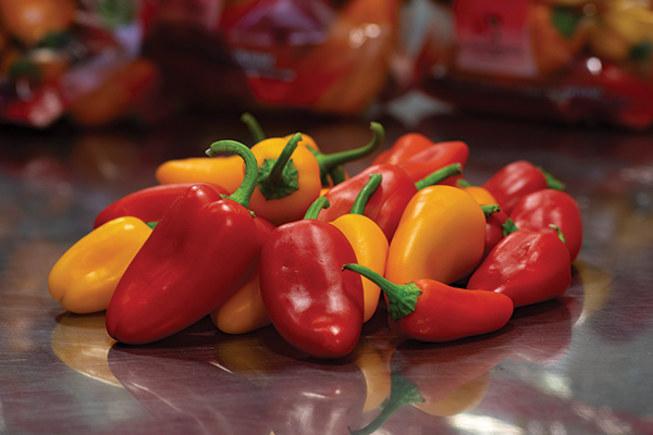 Wilson Produce has been making waves in the pepper category with its sweet, colorful additions
