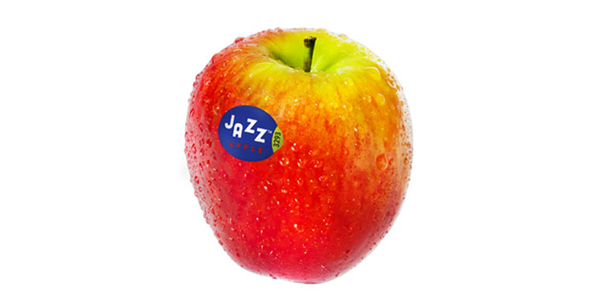 T&G Global is now drumming up big sales for consumers' favorite apple, launching its Bring on the Snack campaign featuring the deliciously crunchy JAZZ™ apple