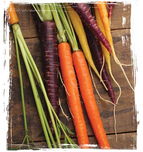 Rainbow Bunch Carrots