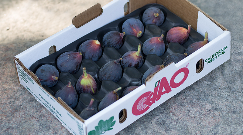 California fresh-grown figs