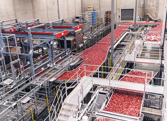 Chelan Fresh's new state-of-the-art facility ensures top-of-the-line food safety