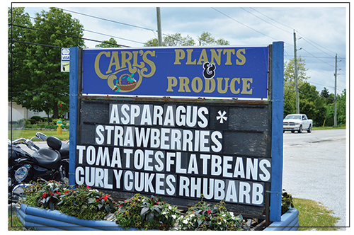 Carl's fruit stand, located at the family farm in Leamington, Ontario