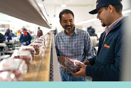 Luis Katsurayama (left), Food Safety Manager, and Erik Castellanos (right), Repack Supervisor, examine one of Jasmine Vineyards' packaging innovations