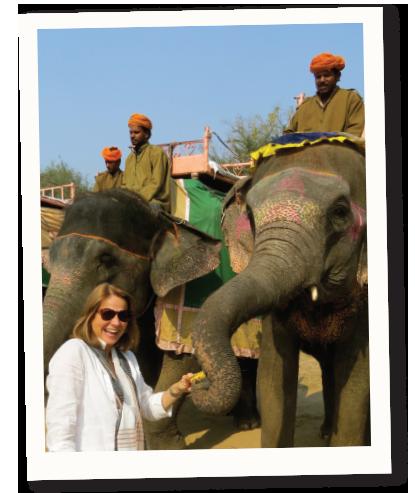 Feeding elephants near Jaipur, India