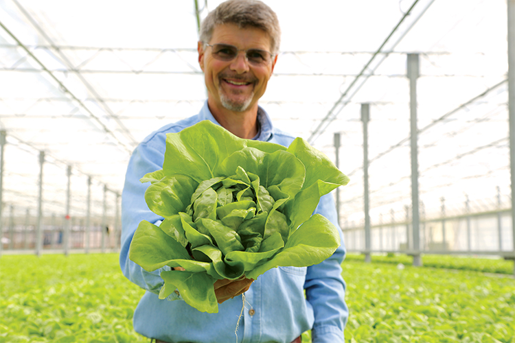 Pete Overgaag, Executive VP of Strategy and Innovation, holds a bunch of Pete's Living Greens Butter Lettuce