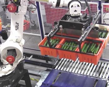 Lola, BMW Robotic Arm, Red Sun Farms