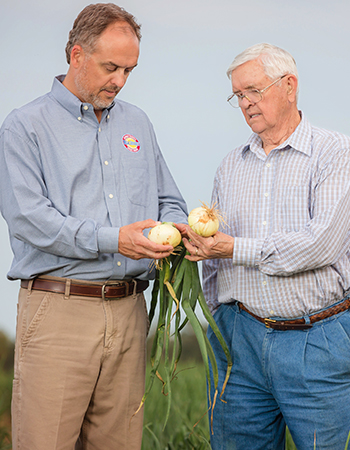 John and Buck Shuman take a look at their sweet onions.
