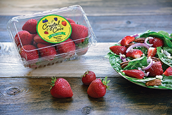 Veg-Fresh Farms' strawberries add sweetness to any boring salad