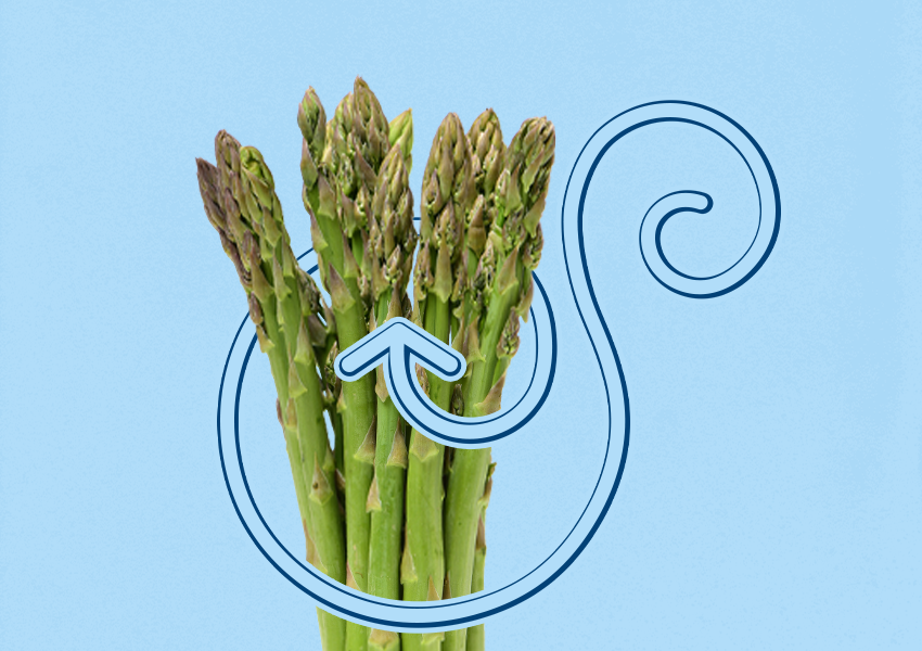 The Tip of the Spear: A Q&A With Lauren Brierly, Asparagus Sales Manager, Progressive Produce