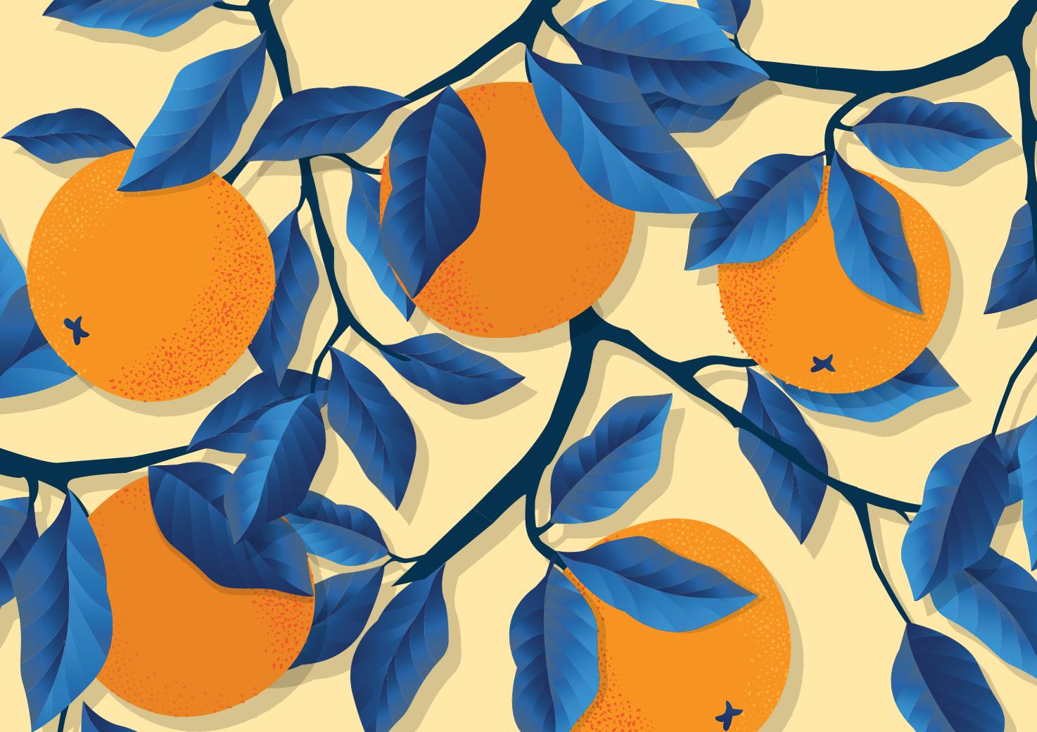 Under the Orange Tree: A California Tale