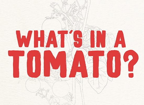 What's in A Tomato? A Q&A With Chris Miller, Produce Director, MOM's Organic Market