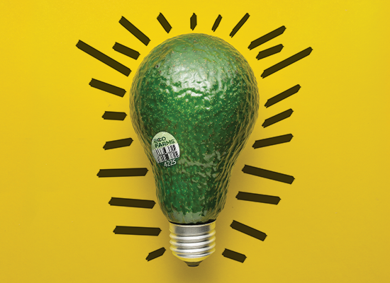 Green Lighting Growth: A Q&A With Karin Gardner, Executive Director of Marketing, Oppy
