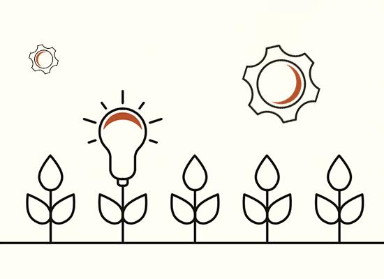 Evolution Through Innovation
